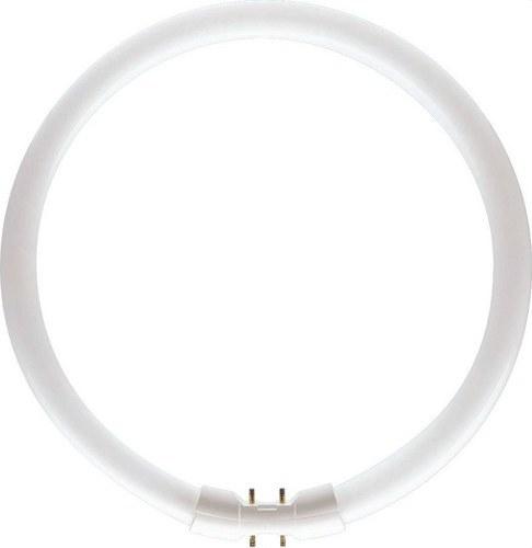 Fluorescente circular Master TL5 diámetro 16mm 22W/840