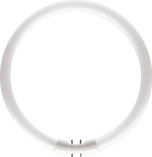 Fluorescente circular Master TL5 diámetro 16mm 22W/830
