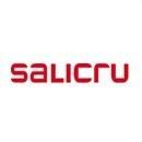 Logo-image-salicru-0603-md18_130