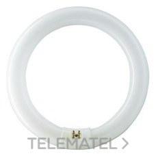 PHILIPS 55968515 Fluorescente Master TL-E circular 32W-840 4000K