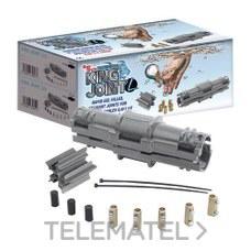 RAYTECH RAYKJOINTL10 Torpedo gel conexión recta hasta 5 cables 2,5-10mm²