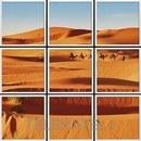 Panel LED VISION foto Sahara 600x600mm con referencia 58841 de la marca VISION.